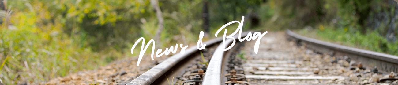 News & Blog|アミロハ