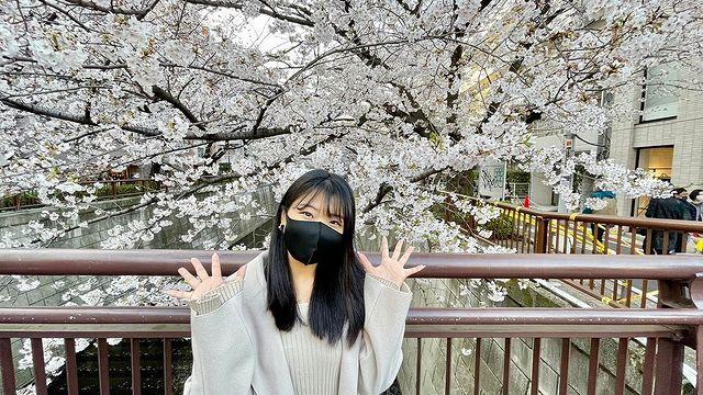 目黒川の桜がキレイでした🌸page-visual 目黒川の桜がキレイでした🌸ビジュアル