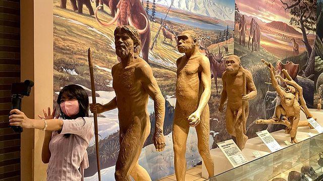 茨城県自然博物館に行ってきました✨page-visual 茨城県自然博物館に行ってきました✨ビジュアル