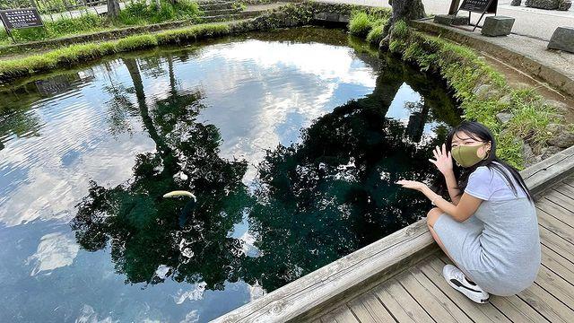 山梨旅行で立ち寄った【忍野八海】page-visual 山梨旅行で立ち寄った【忍野八海】ビジュアル